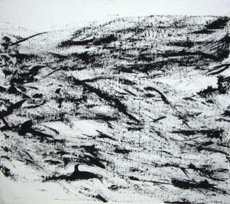 francine-kooij-acryl-zwart-wit-bewegend-paletmes-02