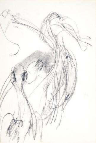 francine-kooij-houtskool-tekeningen-artis-dieren-03