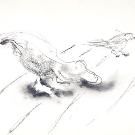 Houtskool tekeningen Artis