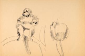 francine-kooij-houtskool-tekeningen-artis-dieren-21