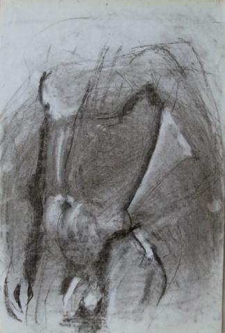 francine-kooij-houtskool-tekeningen-modelstudies-02