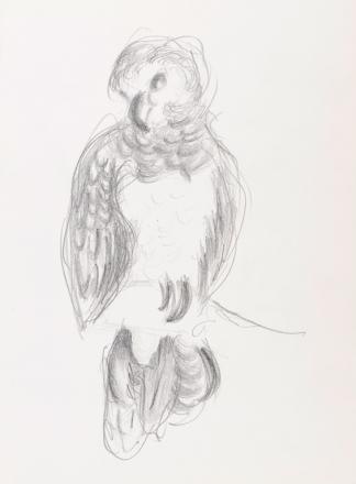 francine-kooij-potlood-tekeningen-artis-02
