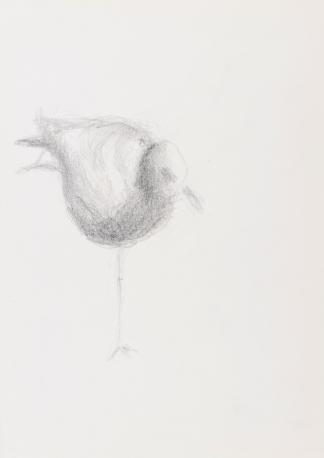 francine-kooij-potlood-tekeningen-artis-03