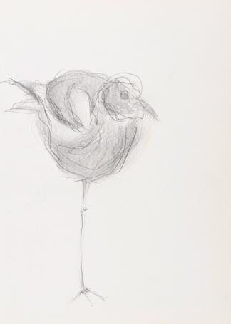 francine-kooij-potlood-tekeningen-artis-06