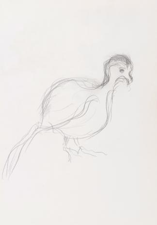 francine-kooij-potlood-tekeningen-artis-10