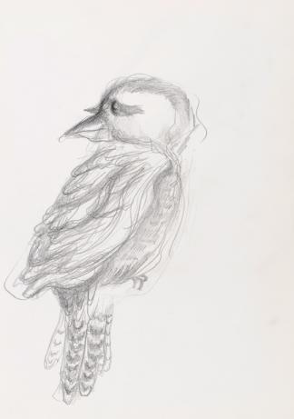 francine-kooij-potlood-tekeningen-artis-12