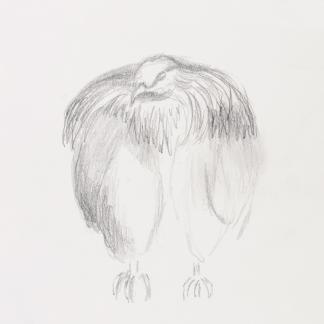 francine-kooij-potlood-tekeningen-artis-17