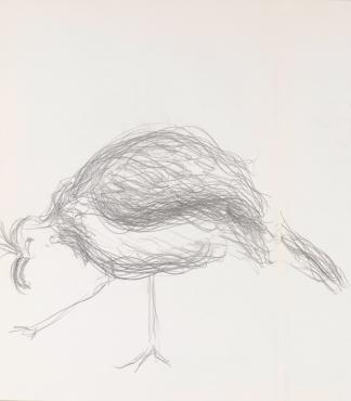 francine-kooij-potlood-tekeningen-artis-18