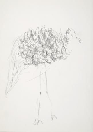 francine-kooij-potlood-tekeningen-artis-20